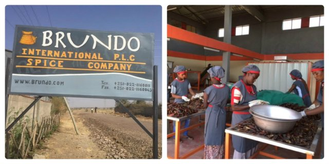 Tefferi's brand new plant opened on Feb. 1, 2015 in Modjo, Ethiopia. Photo: Brundo.